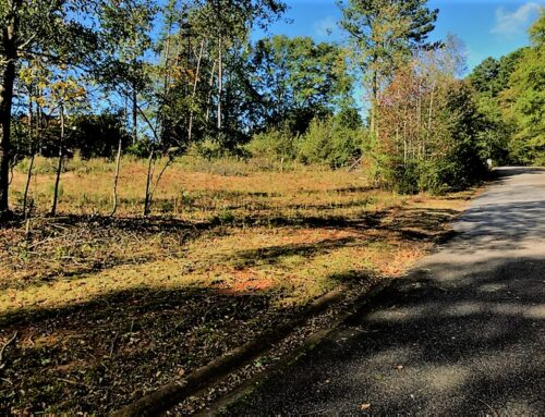 ➡100 Professional Park Drive Land Lot 1258, Lot 7- All Utilities onsite! Commercial Zoning!⬅